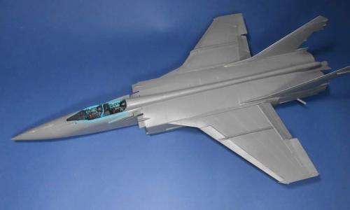 MiG-31 Foxhound, AMK 1/48 (WIP)