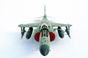 Sea Harrier FA2, Kinetic 1/48 (kit No. 48041)