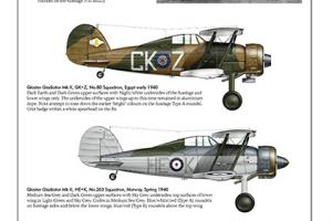 The Gloster Gladiator, Airframe Album No.12 - Special discount offer (Valiant Wings)