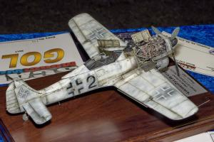 Scale ModelWorld 2017, Fw190F-8 by Dimitris Bitsiaras (Gold, Class 21)