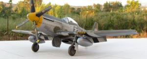 P-51D Mustang, Tamiya 1/48